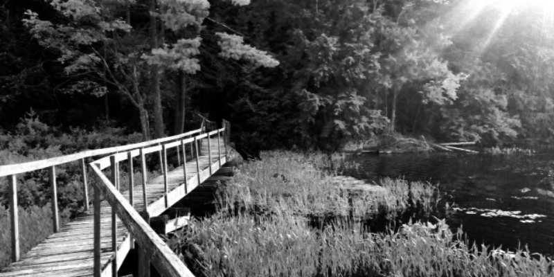 bridge on hardy lake trail